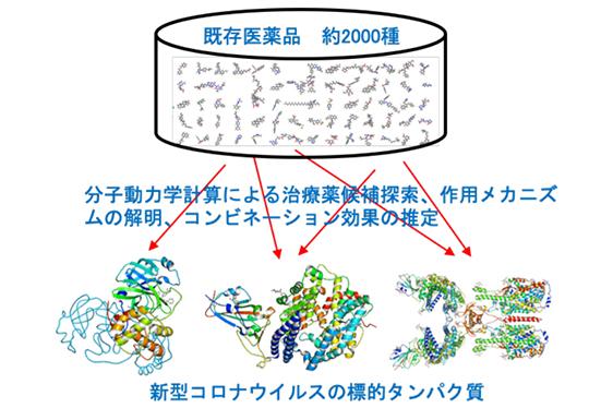 画像:新型コロナウイルスの標的タンパク質